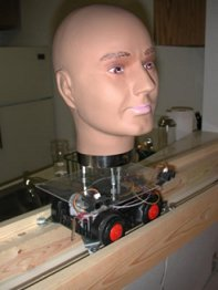 Edward's Talking Head