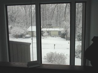 looking out my front window