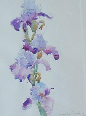 Iris Cluster by Jackie Saunders