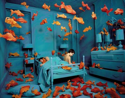 Revenge of the Goldfish by Sandra Skoglund