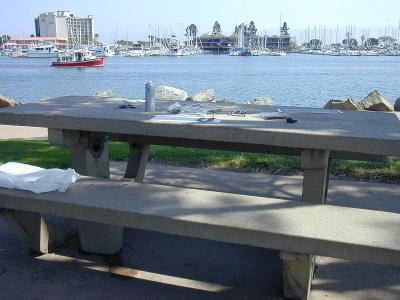 San Diego Bench in Spanish Landing